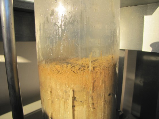 Sediment sample up close
